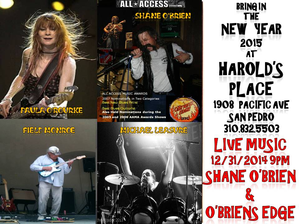 Shane O'Brien New Years Eve 12 31 2014 poster
